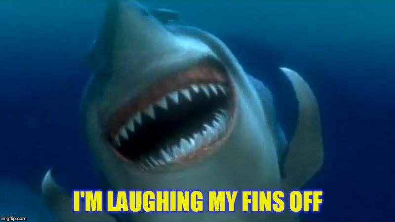 I'M LAUGHING MY FINS OFF | made w/ Imgflip meme maker