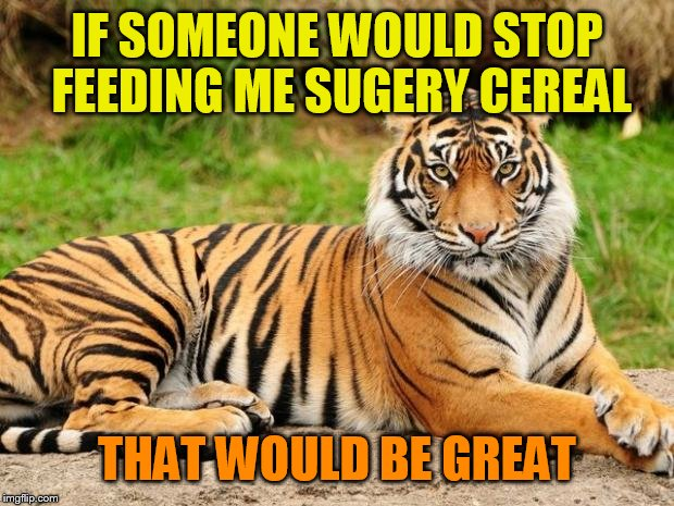 srsly tiger | IF SOMEONE WOULD STOP FEEDING ME SUGERY CEREAL THAT WOULD BE GREAT | image tagged in srsly tiger | made w/ Imgflip meme maker