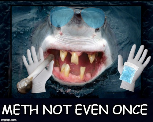 Somebody say in was shark tweak  | METH NOT EVEN ONCE | image tagged in shark week,shark,memes,funny,meth | made w/ Imgflip meme maker