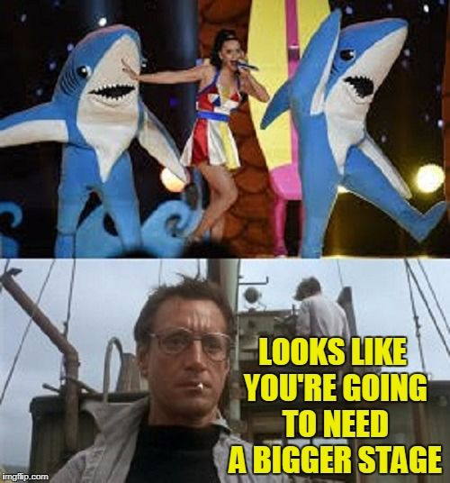 the one on the left is a killer (Shark Week - a Raydog event) |  LOOKS LIKE YOU'RE GOING TO NEED A BIGGER STAGE | image tagged in memes,shark week,left shark,sharks,katy perry,jaws | made w/ Imgflip meme maker