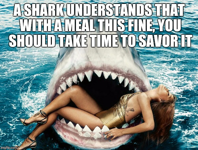 Shark Week...A Raydog and Discovery Channel event | A SHARK UNDERSTANDS THAT WITH A MEAL THIS FINE, YOU SHOULD TAKE TIME TO SAVOR IT | image tagged in jbmemegeek,shark week,rihanna,shark attack | made w/ Imgflip meme maker