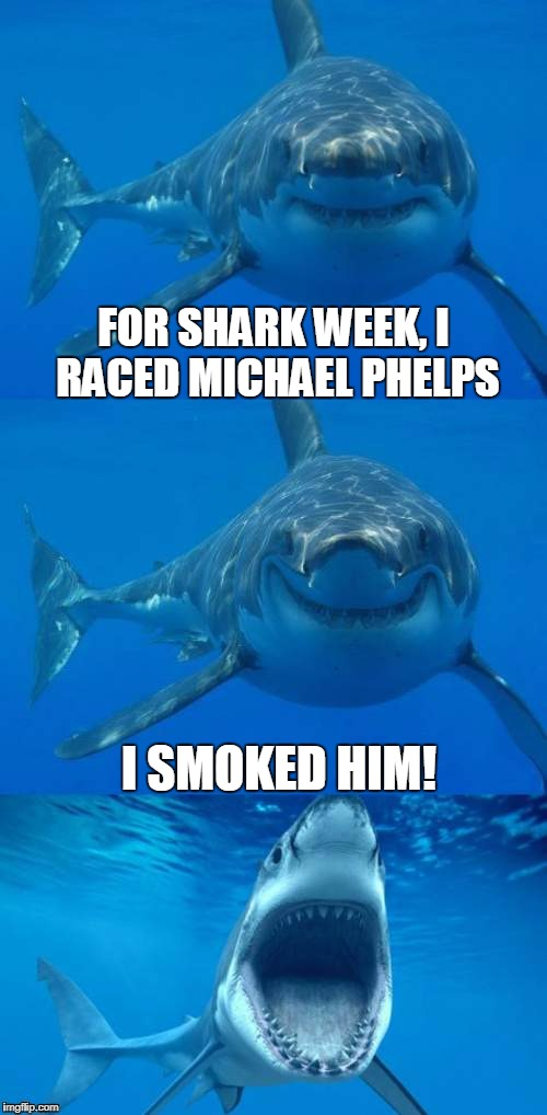 Bad Shark Pun  | FOR SHARK WEEK, I RACED MICHAEL PHELPS I SMOKED HIM! | image tagged in bad shark pun,michael phelps,shark week,smoke,weed | made w/ Imgflip meme maker