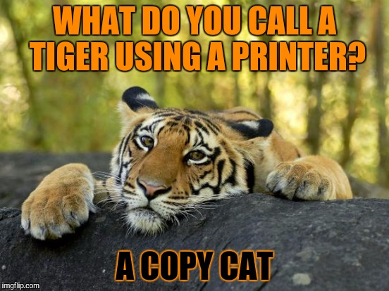 WHAT DO YOU CALL A TIGER USING A PRINTER? A COPY CAT | made w/ Imgflip meme maker