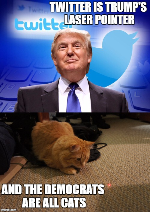 The media is just mad because they're getting beat at their own game. | TWITTER IS TRUMP'S LASER POINTER AND THE DEMOCRATS ARE ALL CATS | image tagged in trump,twitter,cats,the game,democrats,biased media | made w/ Imgflip meme maker