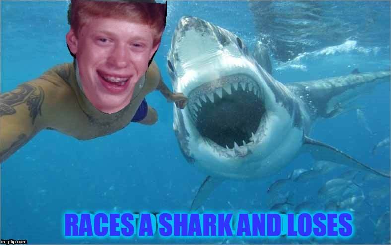 RACES A SHARK AND LOSES | made w/ Imgflip meme maker