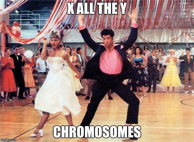X ALL THE Y CHROMOSOMES | made w/ Imgflip meme maker