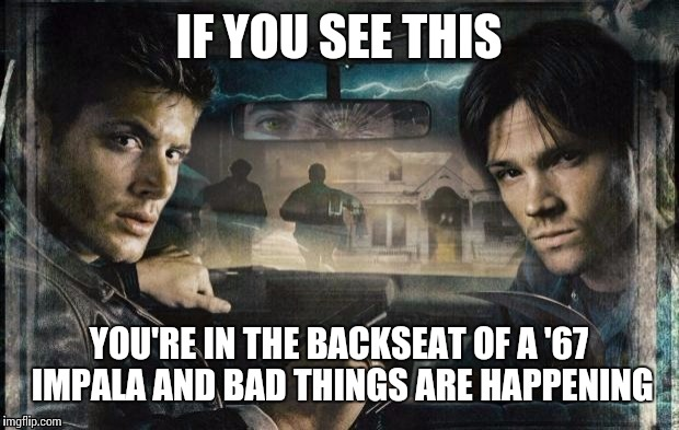 Agents Page and Plant | IF YOU SEE THIS YOU'RE IN THE BACKSEAT OF A '67 IMPALA AND BAD THINGS ARE HAPPENING | image tagged in supernatural,dean winchester,sam winchester,memes | made w/ Imgflip meme maker