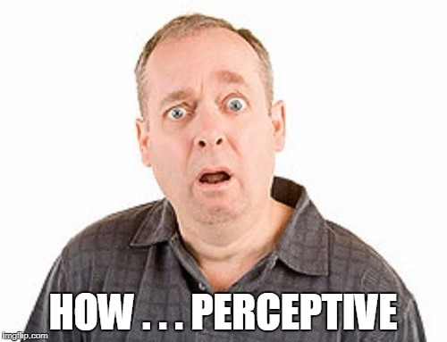 HOW . . . PERCEPTIVE | made w/ Imgflip meme maker