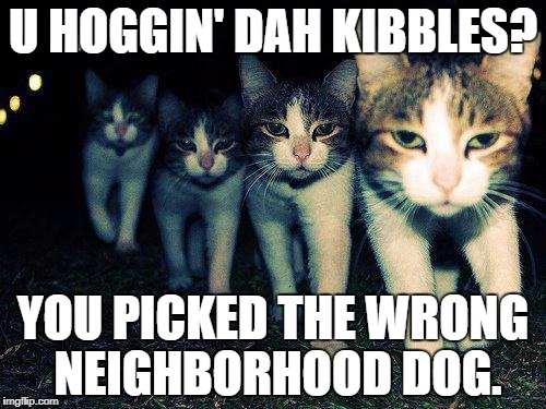 Wrong Neighboorhood Cats Meme | U HOGGIN' DAH KIBBLES? YOU PICKED THE WRONG NEIGHBORHOOD DOG. | image tagged in memes,wrong neighboorhood cats | made w/ Imgflip meme maker