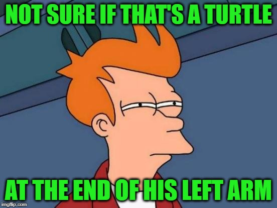 Futurama Fry Meme | NOT SURE IF THAT'S A TURTLE AT THE END OF HIS LEFT ARM | image tagged in memes,futurama fry | made w/ Imgflip meme maker