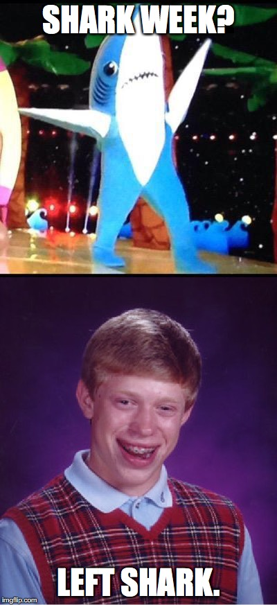 Just my luck. | SHARK WEEK? LEFT SHARK. | image tagged in left shark,bad luck brian,funny | made w/ Imgflip meme maker