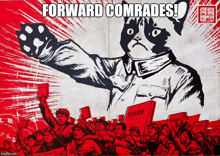 Chairman Meow Motivational | FORWARD COMRADES! | image tagged in chairman meow motivational | made w/ Imgflip meme maker