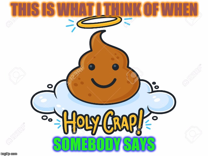 HOLY CRAP | THIS IS WHAT I THINK OF WHEN SOMEBODY SAYS | image tagged in crazy,poop,funny,holy crap | made w/ Imgflip meme maker