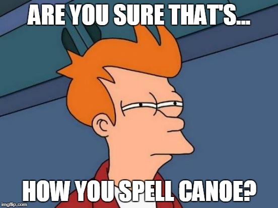 Futurama Fry Meme | ARE YOU SURE THAT'S... HOW YOU SPELL CANOE? | image tagged in memes,futurama fry | made w/ Imgflip meme maker