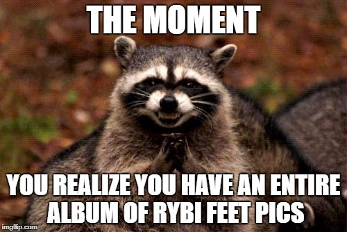 Evil Plotting Raccoon Meme | THE MOMENT YOU REALIZE YOU HAVE AN ENTIRE ALBUM OF RYBI FEET PICS | image tagged in memes,evil plotting raccoon | made w/ Imgflip meme maker