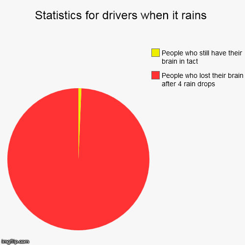 Statistics for drivers in rain | Statistics for drivers when it rains | People who lost their brain after 4 rain drops, People who still have their brain in tact | image tagged in funny,pie charts,rain,drivers,brain loss | made w/ Imgflip pie chart maker