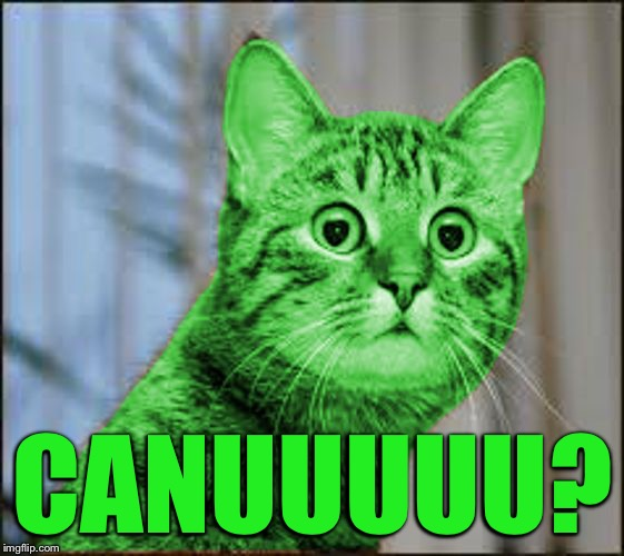 RayCat WTF | CANUUUUU? | image tagged in raycat wtf | made w/ Imgflip meme maker
