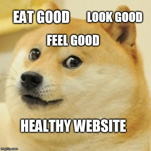 Doge Meme | EAT GOOD LOOK GOOD FEEL GOOD HEALTHY WEBSITE | image tagged in memes,doge | made w/ Imgflip meme maker