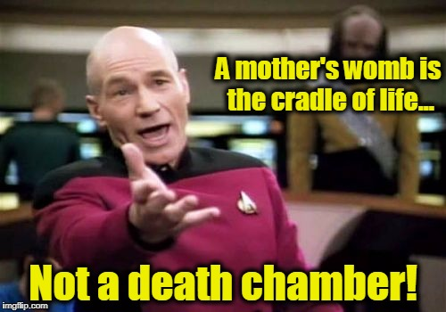 Picard Wtf Meme | A mother's womb is the cradle of life... Not a death chamber! | image tagged in memes,picard wtf,abortion,abortion is murder,prolife,pro choice | made w/ Imgflip meme maker