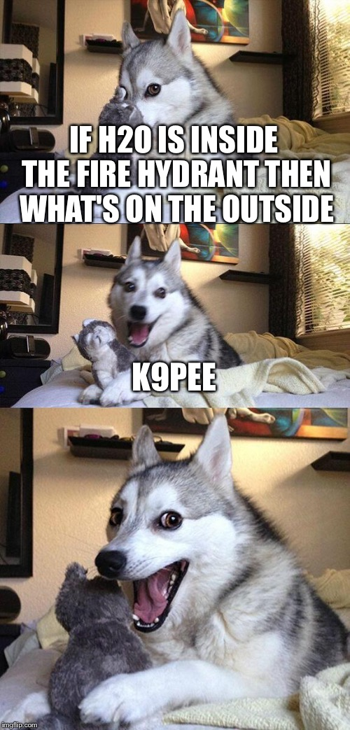 Bad Pun Dog Meme | IF H2O IS INSIDE THE FIRE HYDRANT THEN WHAT'S ON THE OUTSIDE K9PEE | image tagged in memes,bad pun dog | made w/ Imgflip meme maker