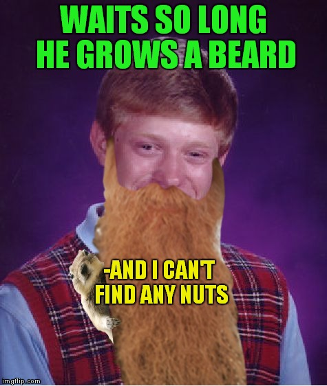 WAITS SO LONG HE GROWS A BEARD -AND I CAN'T FIND ANY NUTS | made w/ Imgflip meme maker