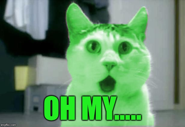 OMG RayCat | OH MY..... | image tagged in omg raycat | made w/ Imgflip meme maker