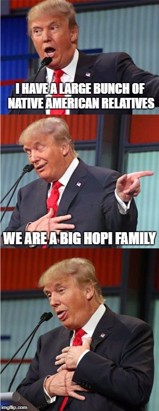 native american relatives | I HAVE A LARGE BUNCH OF NATIVE AMERICAN RELATIVES WE ARE A BIG HOPI FAMILY | image tagged in bad pun trump,trump,native american,funny memes | made w/ Imgflip meme maker