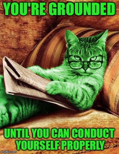 Factual RayCat | YOU'RE GROUNDED UNTIL YOU CAN CONDUCT YOURSELF PROPERLY | image tagged in factual raycat,memes | made w/ Imgflip meme maker