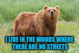 I LIVE IN THE WOODS WHERE THERE ARE NO STREETS | made w/ Imgflip meme maker