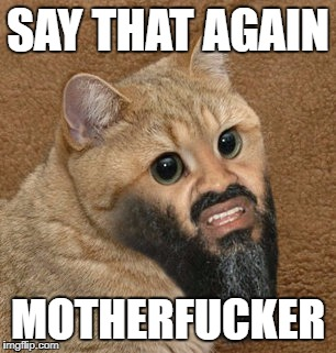 Say that again motherfucker | SAY THAT AGAIN MOTHERF**KER | image tagged in angry,funny,osama,cat,motherfucker | made w/ Imgflip meme maker