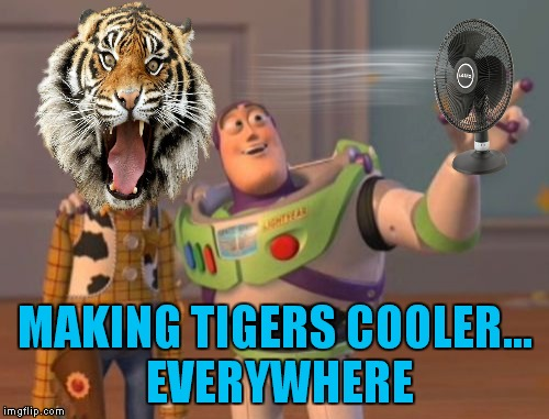 X, X Everywhere Meme | MAKING TIGERS COOLER... EVERYWHERE | image tagged in memes,x,x everywhere,x x everywhere | made w/ Imgflip meme maker