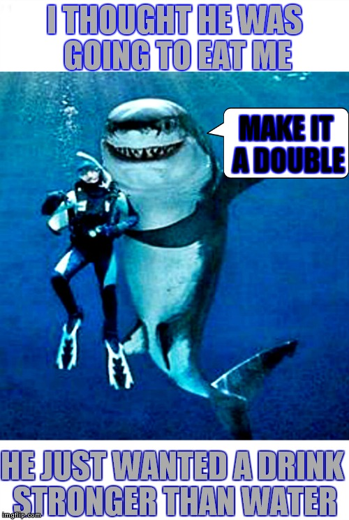 It's easy to make friends with a few drinks during shark week! | I THOUGHT HE WAS GOING TO EAT ME HE JUST WANTED A DRINK STRONGER THAN WATER MAKE IT A DOUBLE | image tagged in shark week,drinks,friends,stay strong baby | made w/ Imgflip meme maker