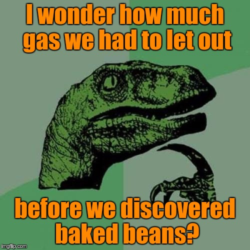 I wonder how much gas we had to let out before we discovered baked beans  | I wonder how much gas we had to let out before we discovered baked beans? | image tagged in memes,philosoraptor,funny,beans,food,fart joke | made w/ Imgflip meme maker