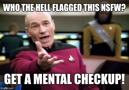 Picard Wtf Meme | WHO THE HELL FLAGGED THIS NSFW? GET A MENTAL CHECKUP! | image tagged in memes,picard wtf | made w/ Imgflip meme maker