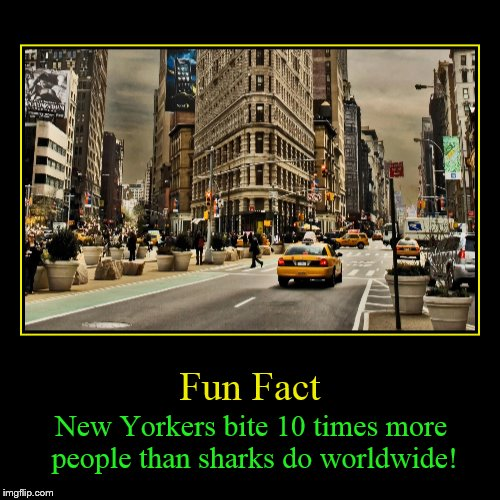 Shark Week! A Raydog and Discovery Channel Event July 23rd - 30th | Fun Fact | New Yorkers bite 10 times more people than sharks do worldwide! | image tagged in funny,demotivationals,shark week,sharks,new york,fun fact | made w/ Imgflip demotivational maker