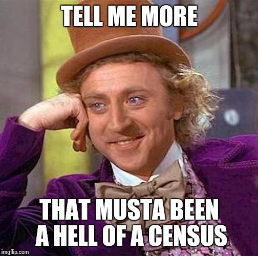 Creepy Condescending Wonka Meme | TELL ME MORE THAT MUSTA BEEN A HELL OF A CENSUS | image tagged in memes,creepy condescending wonka | made w/ Imgflip meme maker