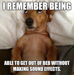 Getting old | I REMEMBER BEING ABLE TO GET OUT OF BED WITHOUT MAKING SOUND EFFECTS. | image tagged in dog in bed | made w/ Imgflip meme maker