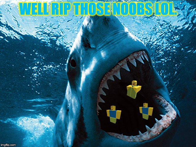 Shark Eating Noobs. | WELL RIP THOSE NOOBS LOL. | image tagged in shark week,shark memes,noobs | made w/ Imgflip meme maker