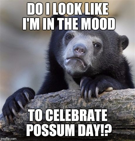 Confession Bear Meme | DO I LOOK LIKE I'M IN THE MOOD TO CELEBRATE POSSUM DAY!? | image tagged in memes,confession bear | made w/ Imgflip meme maker