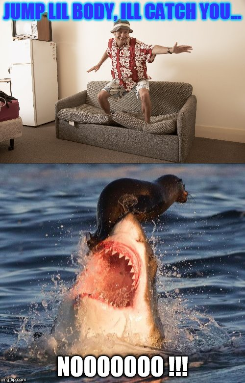 Saved by the sofa... | JUMP LIL BODY, ILL CATCH YOU... NOOOOOOO !!! | image tagged in sofasurfer,sealonshark | made w/ Imgflip meme maker