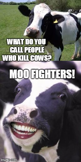 Bad Cow Pun | MOO FIGHTERS! WHAT DO YOU CALL PEOPLE WHO KILL COWS? | image tagged in foo fighters,cow,bad cow pun,bad pun | made w/ Imgflip meme maker