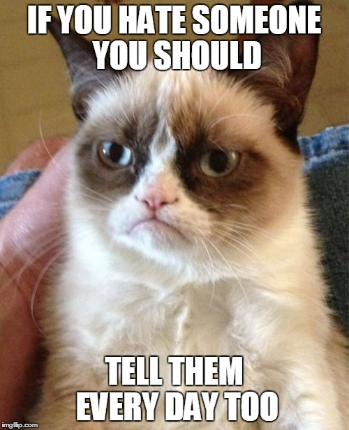 Grumpy Cat Meme | IF YOU HATE SOMEONE YOU SHOULD TELL THEM EVERY DAY TOO | image tagged in memes,grumpy cat | made w/ Imgflip meme maker