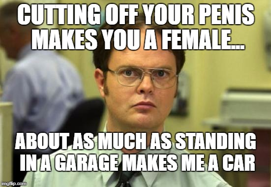 Dwight Schrute Meme | CUTTING OFF YOUR P**IS MAKES YOU A FEMALE... ABOUT AS MUCH AS STANDING IN A GARAGE MAKES ME A CAR | image tagged in memes,dwight schrute | made w/ Imgflip meme maker