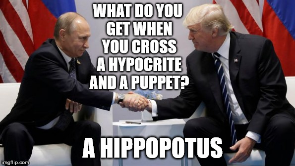 Putin's other hand is firmly up the Puppet's ass | WHAT DO YOU GET WHEN YOU CROSS A HYPOCRITE AND A PUPPET? A HIPPOPOTUS | image tagged in trump putin,putin's puppet,not a puppet,your a puppet,the russians did it | made w/ Imgflip meme maker