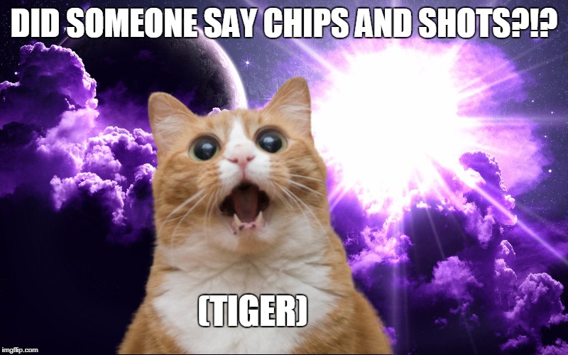 DID SOMEONE SAY CHIPS AND SHOTS?!? (TIGER) | made w/ Imgflip meme maker