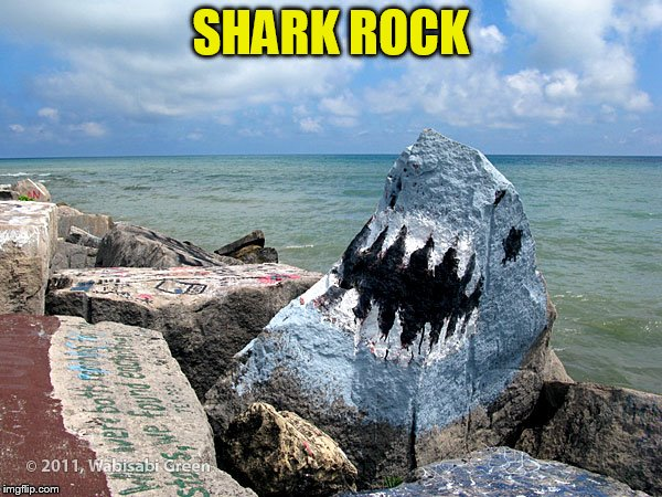 SHARK ROCK | made w/ Imgflip meme maker