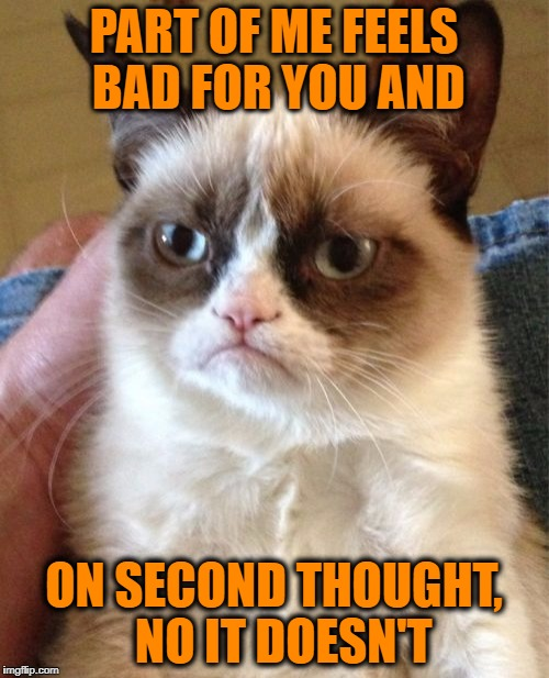 Grumpy Cat Meme | PART OF ME FEELS BAD FOR YOU AND ON SECOND THOUGHT,  NO IT DOESN'T | image tagged in memes,grumpy cat | made w/ Imgflip meme maker