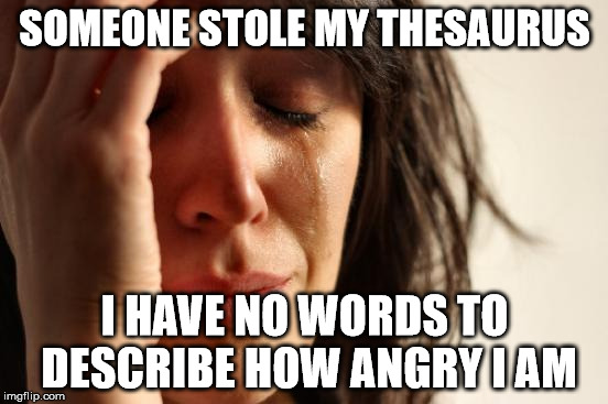First World Problems Meme | SOMEONE STOLE MY THESAURUS I HAVE NO WORDS TO DESCRIBE HOW ANGRY I AM | image tagged in memes,first world problems | made w/ Imgflip meme maker