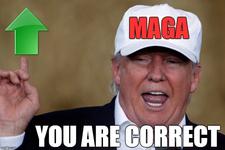 Donald Trump Blank MAGA Hat | MAGA YOU ARE CORRECT | image tagged in donald trump blank maga hat | made w/ Imgflip meme maker