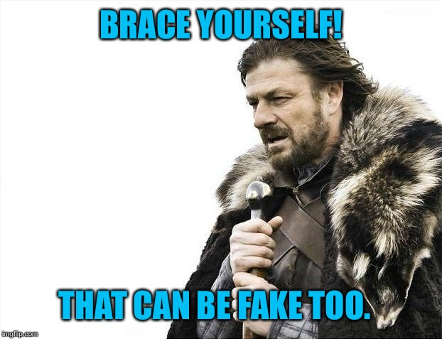Brace Yourselves X is Coming Meme | BRACE YOURSELF! THAT CAN BE FAKE TOO. | image tagged in memes,brace yourselves x is coming | made w/ Imgflip meme maker